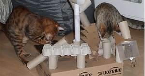 Katzenspielzeug Selber Machen Karton : katzenspielzeug aus eierkarton basteln bouwunique ~ Frokenaadalensverden.com Haus und Dekorationen