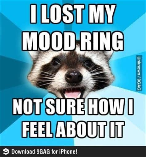 Mood Ring Meme - lame pun raccoon lost its mood ring favorites pinterest