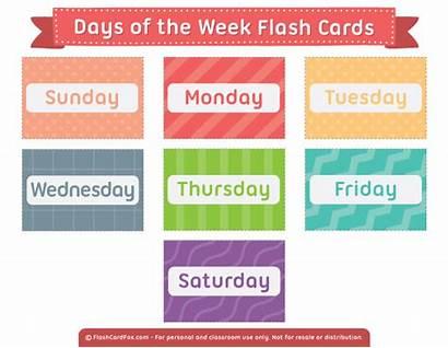 Days Week Cards Flash Printable English Flashcard