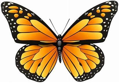 Butterfly Clip Orange Transparent Butterflies Clipart Wings