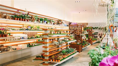 the garden shopping shop arrival gift shop