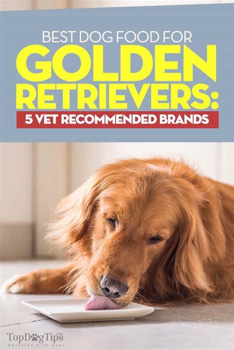 Best Dog Food For Golden Retrievers 5 Vet Recommended