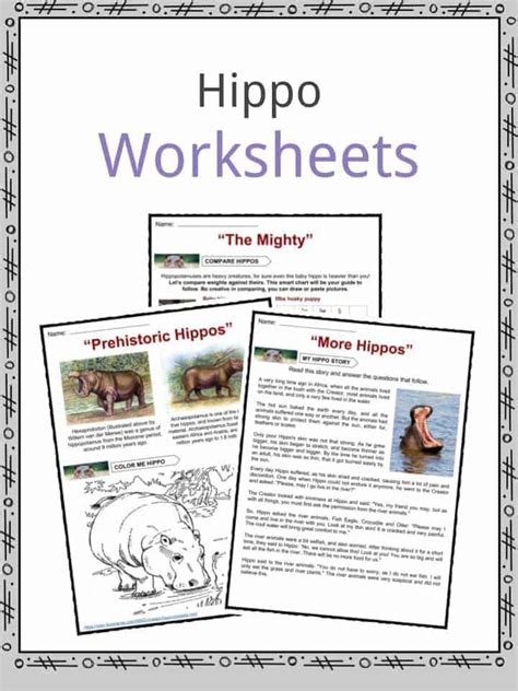 hippopotamus facts worksheets information  kids