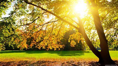 Осень, природа осенью широкоформатные обои и Hd обои для