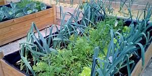 Potager Hors Sol : potager en lasagne sur une terrasse c 39 est possible ~ Premium-room.com Idées de Décoration