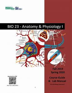 Bio23 F19-s20 Complete Course Guide By Human Anatomy