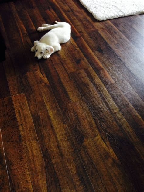 laminate wood flooring for pets is laminate flooring durable with pets