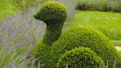 Herbst Garten Schneiden by Buchsbaum Schneiden So Gelingt Der Perfekte Formschnitt