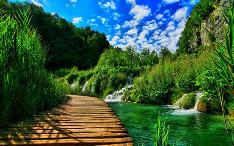 wooden pontoon bridge nature landscape hd wallpapers wallpaperscom