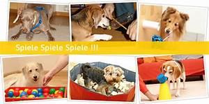 Haus Dekorieren Spiele Kostenlos : spass mit hund die seiten wider die langeweile und den ~ Lizthompson.info Haus und Dekorationen