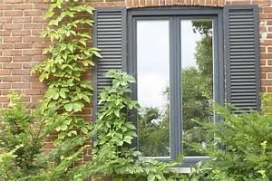Plantes Grimpantes Mur : plantes grimpantes un entretien facile jardiner ~ Melissatoandfro.com Idées de Décoration