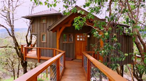 Treehouse Masters Wiki