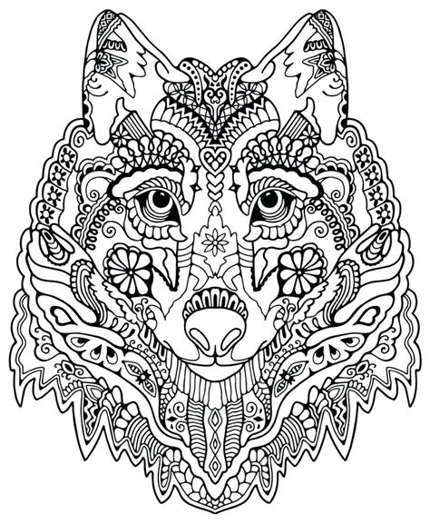 wild cat coloring pages  getcoloringscom  printable colorings pages  print  color