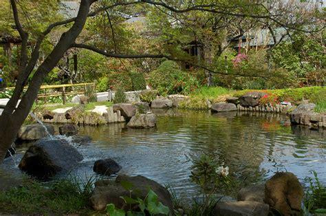 Teich Und Garten by Korakuen And Other Flowers And Gardens