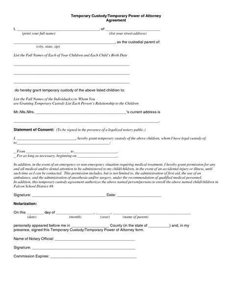 temporary guardianship form texas