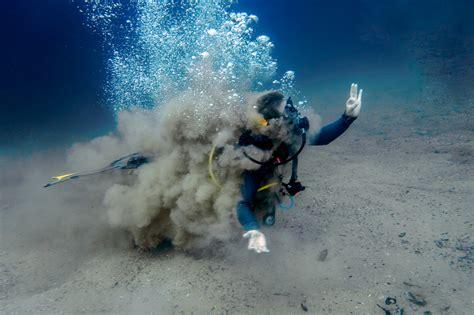 tales   odd  ugly  diving barracuda lake