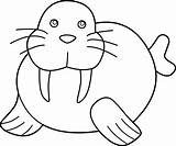 Walrus Cute Coloring Clip Clipart Sweetclipart sketch template