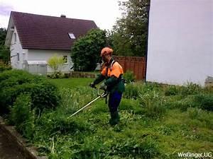Schnell Wachsende Büsche : grundst cke m hen hecken und b sche schneiden ~ Whattoseeinmadrid.com Haus und Dekorationen