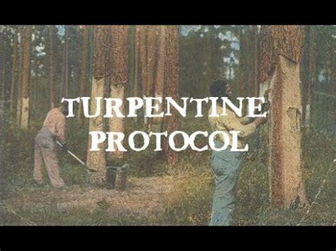 turpentine protocol candida  parasites youtube