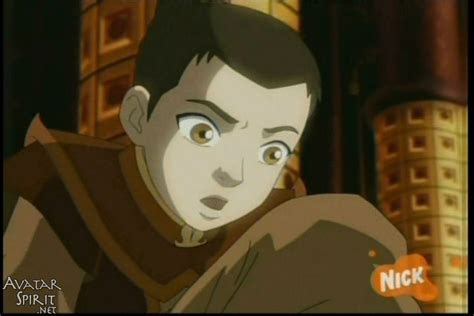 How Do You Say He Has Brown Hair In my seems to think zuko has brown i say he has