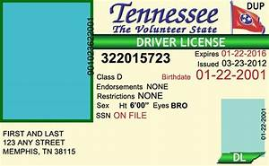 Drivers License  U0026gt  Tennessee Editable Psd Template