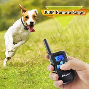 top 10 best dog training collars collars for sale in With best dog training sites