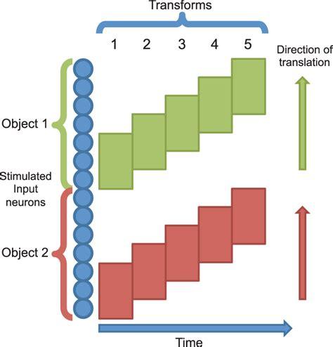 Training stimuli schematic. Two stimuli are presented simultaneously to...   Download Scientific ...