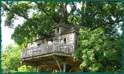 chambre hote dans les arbres cabanes perchées dans les arbres sud ouest