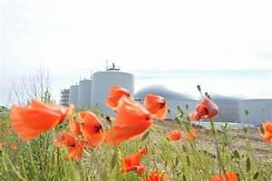 Solarzelle Funktionsweise Einfach Erklärt : biogasanlage die funktionsweise einfach erkl rt ~ A.2002-acura-tl-radio.info Haus und Dekorationen