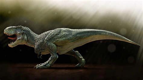 Animal Dinosaur Wallpaper - dinosaur wallpaper hd groovy wallpapers