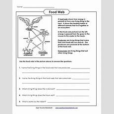 Pin By Pat Ireland On Homeschool Science  Food Web Worksheet, Food Chain Worksheet, Science