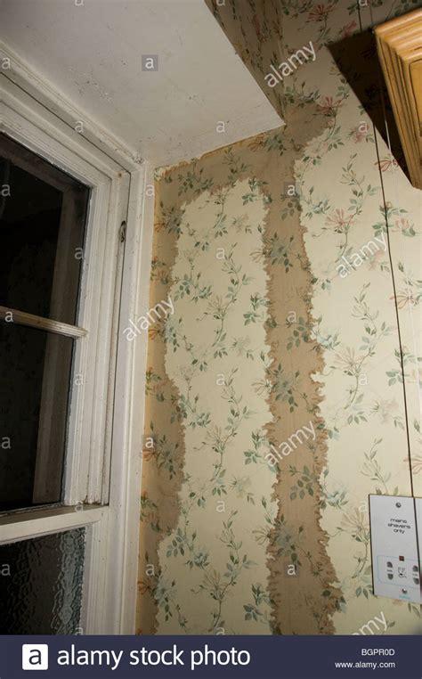 danos por agua al papel tapiz de nieve  hielo en casa