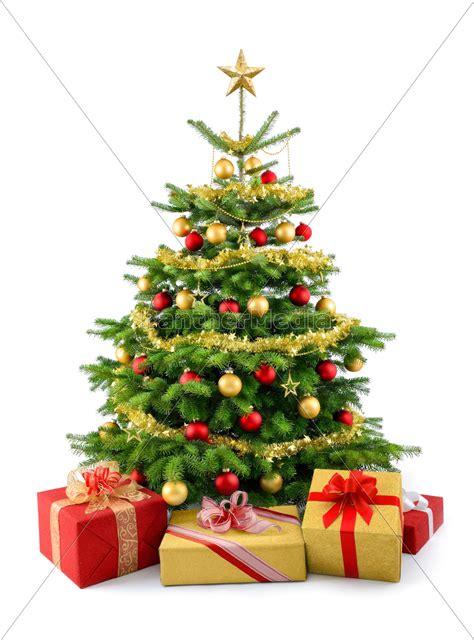 dichter weihnachtsbaum mit geschenken in rot und gold