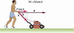 Module 9  Vectors