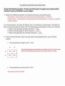 Simpsons Genetic Probability Worksheet Answers