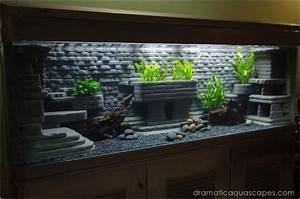 L Form Aquarium : 15 besten aquarium bilder auf pinterest aquarium ideen planted aquarium und aquarienfische ~ Sanjose-hotels-ca.com Haus und Dekorationen