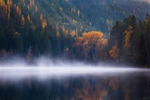 Wallpaper, Echo, Lake, Forest, Trees, Fog, Columbia, Autumn