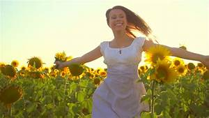 Summertime Field Of Flowers And Sunset Stock Footage Video ...