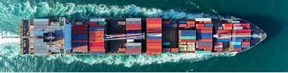 Risk Articles Expert Allianz Insights Procurement Agcs