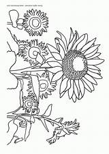 Coloring Pages Flowers Sunflower Flower Printable Coloring2print sketch template