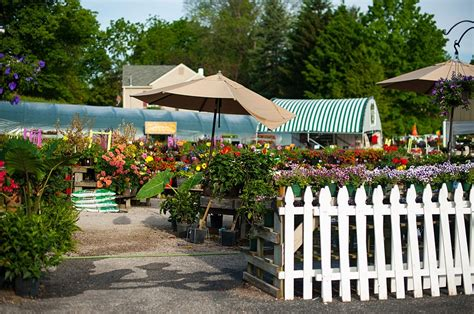 white oak garden center white oak 19 white oak gardens cincinnati oh