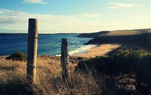 Water, Sunrise, Blue, Nature, Coast, Sun, Sand, Dune, Beaches