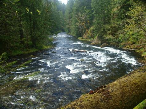 salmon river trail backpackingcamping