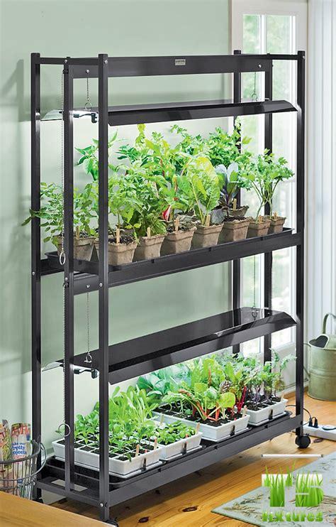 grow light setup how to set up an indoors garden t5 grow light fixtures