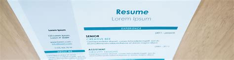 Best Resume Font Size For Calibri by 8 Resume Tips For New Seekers Teach For America Environmentalist Mycvfactory 5 Best Font