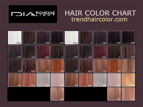 richesse hair color chart instructions ingredients