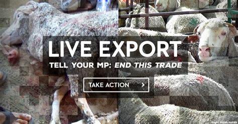 export rspca australia