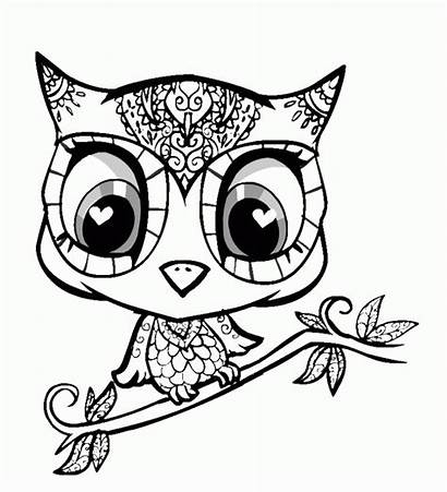 Coloring Pages Animal Dragoart Animals Popular
