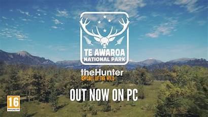 Awaroa National Park Te Thehunter Dlc Call