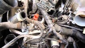1998 Nissan Maxima - Intake Assembly
